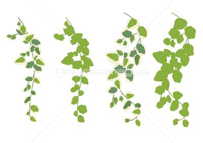 癒し系植物葉 背景イラスト素材 素材good